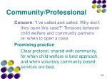 community professional