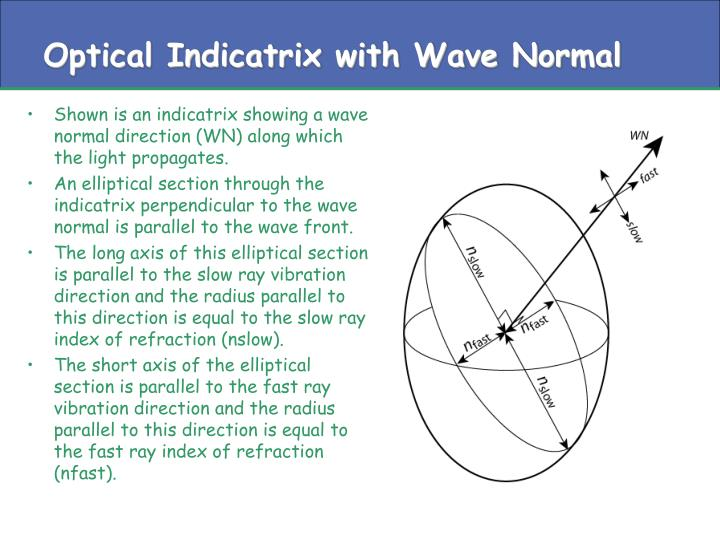 Optical Indicatrix with Wave Normal