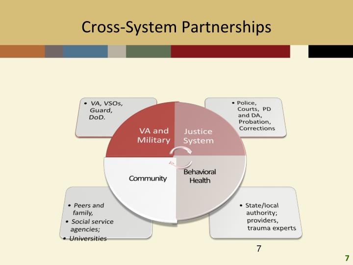 Cross-System Partnerships