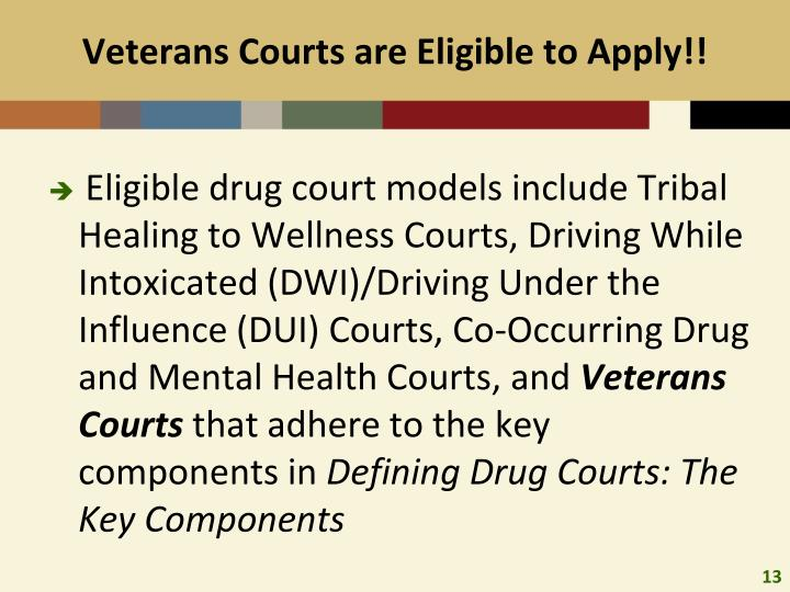 Veterans Courts are Eligible to Apply!!