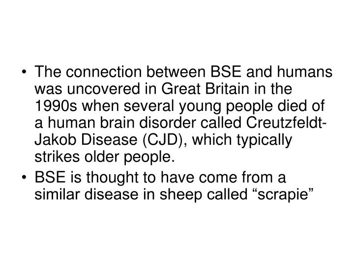 The connection between BSE and humans was uncovered in Great Britain in the 1990s when several young people died of a human brain disorder called Creutzfeldt-Jakob Disease (CJD), which typically strikes older people.