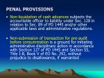 penal provisions