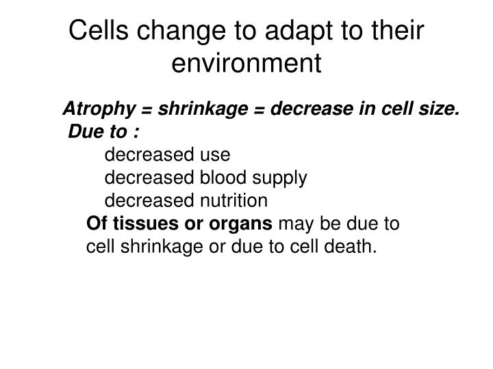 Cells change to adapt to their environment