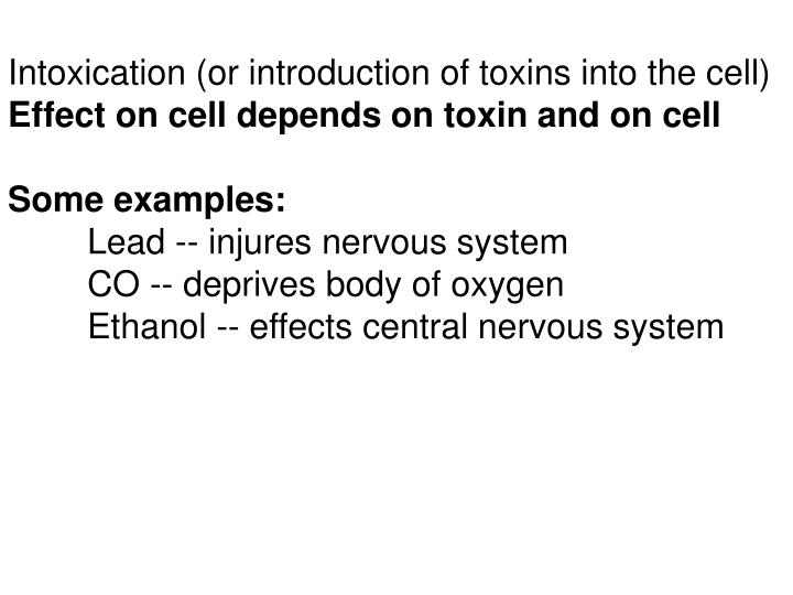 Intoxication (or introduction of toxins into the cell)