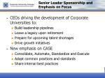 senior leader sponsorship and emphasis on focus