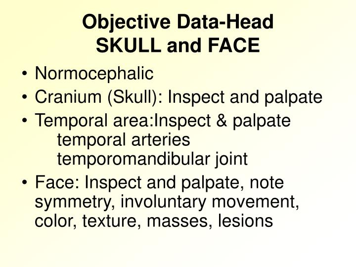 Objective data head skull and face