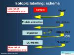 isotopic labeling schema