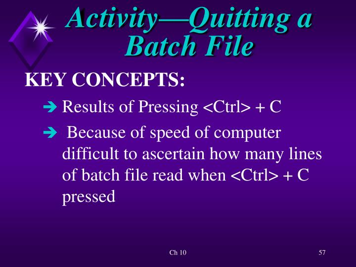 Activity—Quitting a Batch File