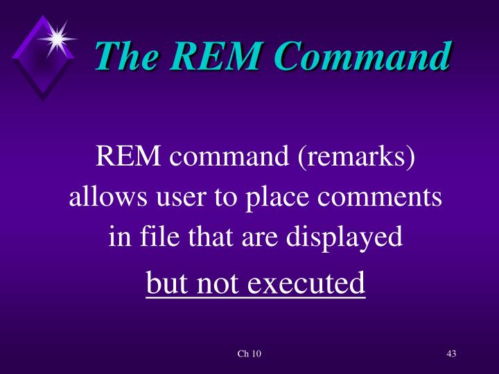 The REM Command