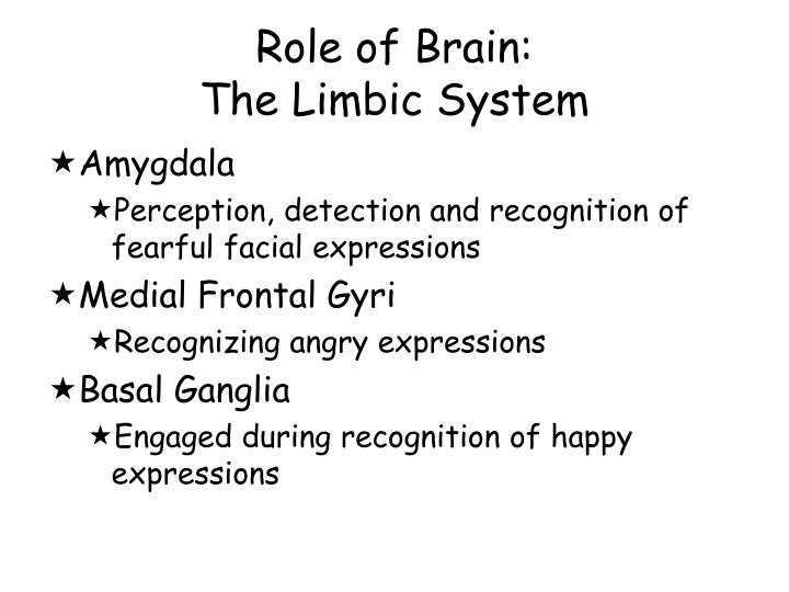 Role of Brain: