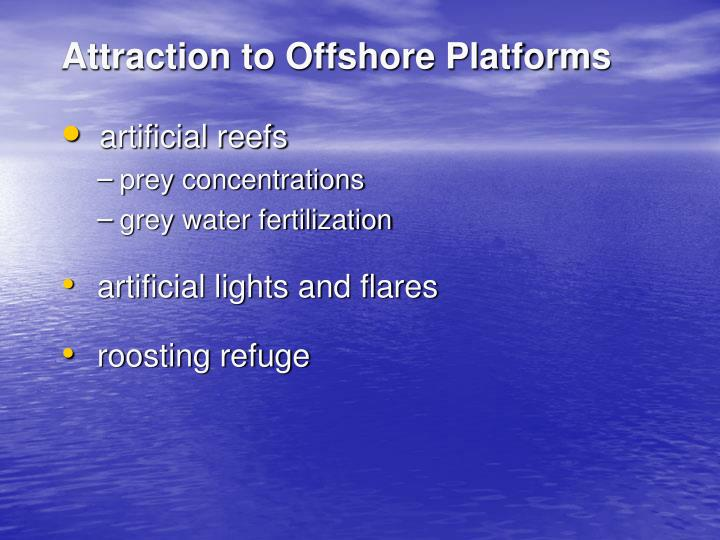 Attraction to Offshore Platforms