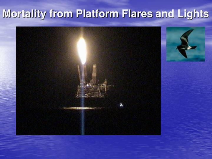Mortality from Platform Flares