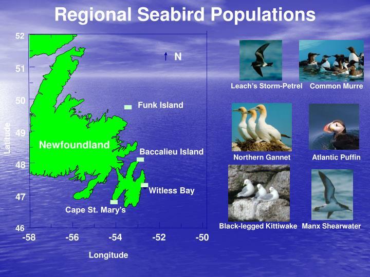 Regional Seabird Populations