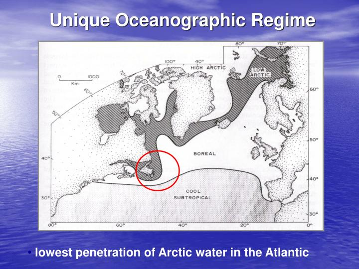 Unique Oceanographic Regime
