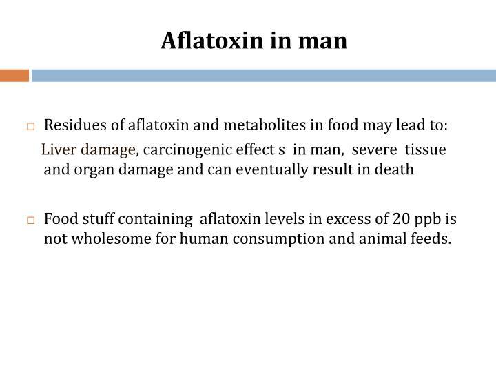 Aflatoxin in man