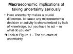 macro economic implications of taking uncertainty seriously