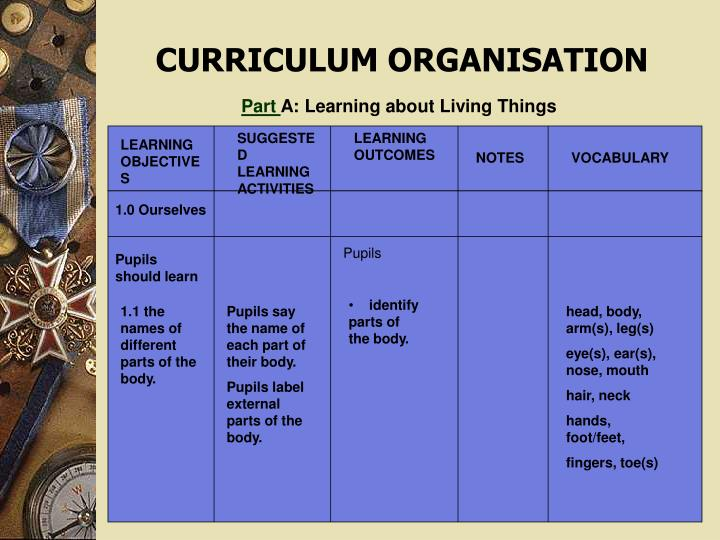 SUGGESTED LEARNING ACTIVITIES