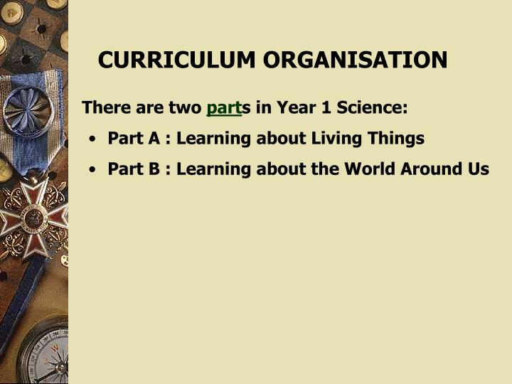 CURRICULUM ORGANISATION