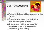court dispositions1