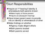 court responsibilities
