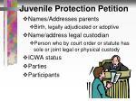juvenile protection petition