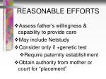 reasonable efforts1
