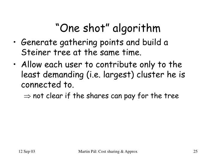 """One shot"" algorithm"