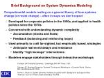 brief background on system dynamics modeling