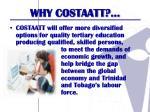 why costaatt4