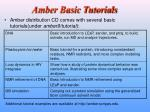 amber basic tutorials