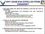 why adam was expelled from paradise