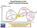 broad dynamics of the health protection enterprise