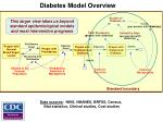 diabetes model overview1