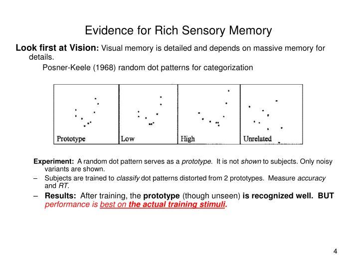 Evidence for Rich Sensory Memory