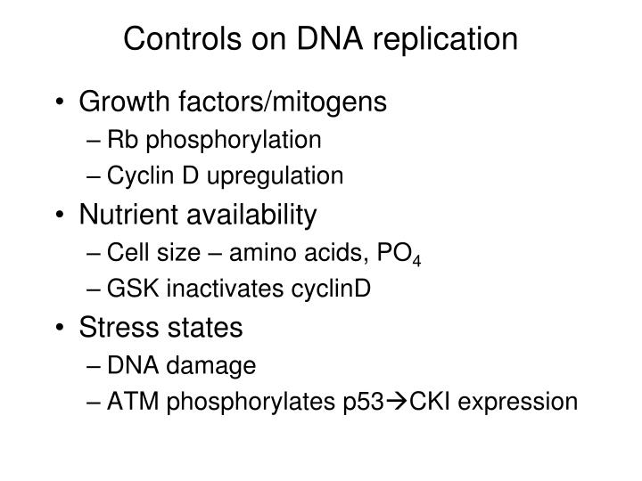 Controls on DNA replication