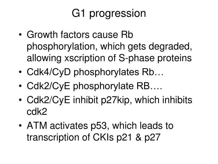 G1 progression