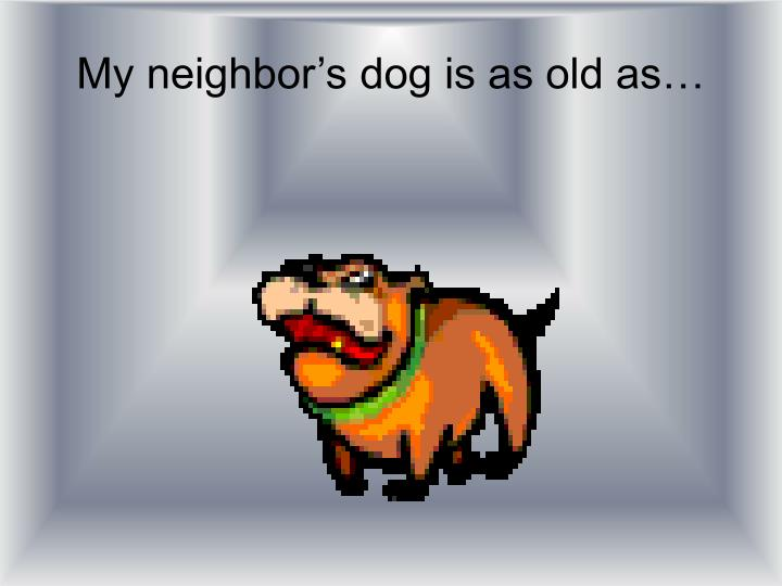 My neighbor's dog is as old as…