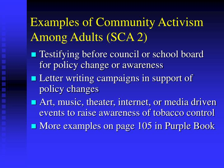 Examples of Community Activism Among Adults