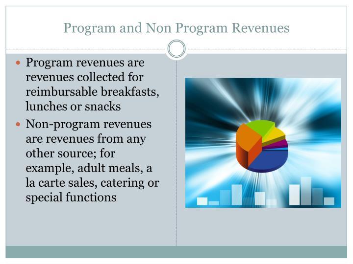Program and Non Program Revenues