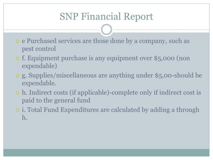 SNP Financial Report