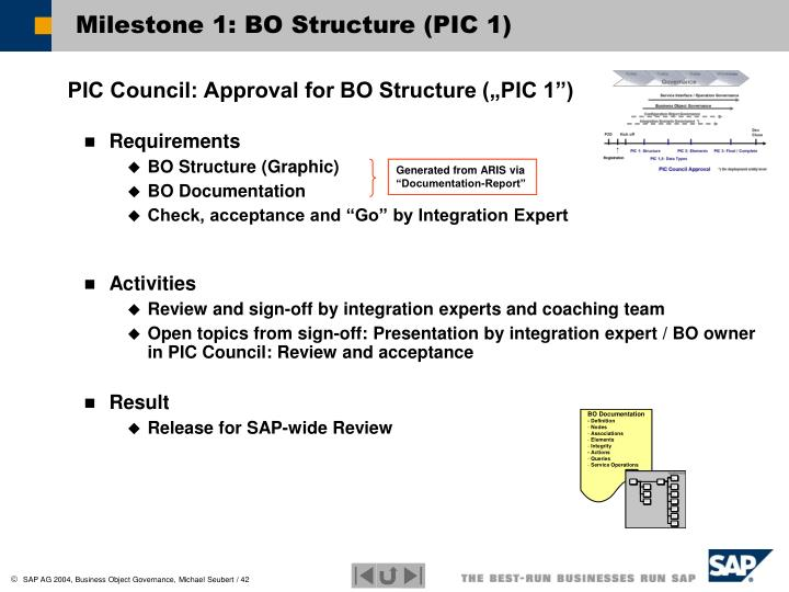 Milestone 1: BO Structure (PIC 1)
