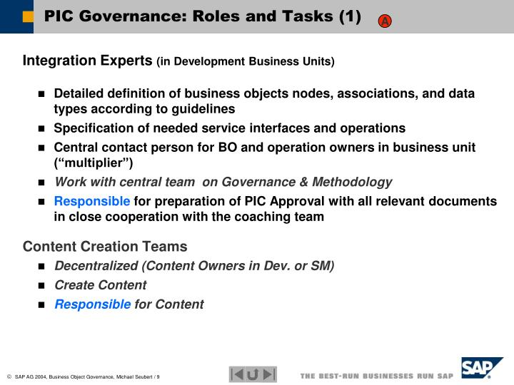 PIC Governance: Roles and Tasks (1)