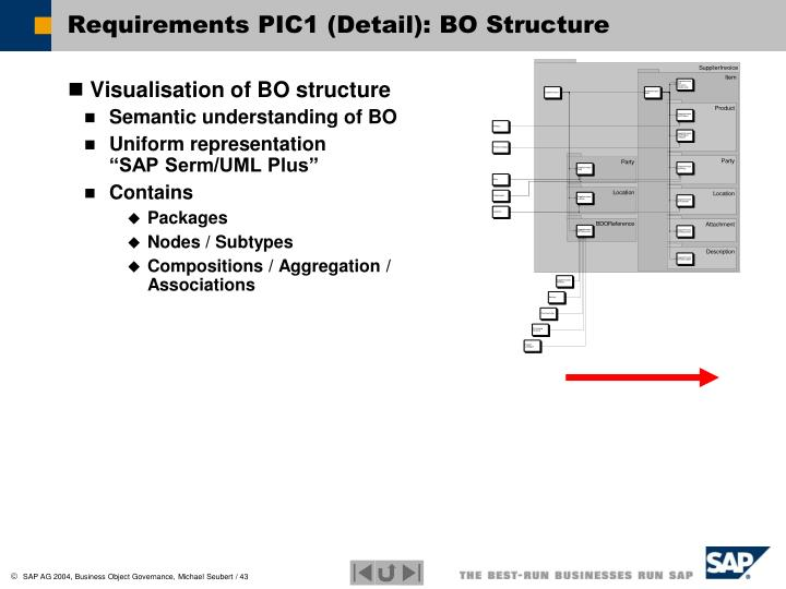 Requirements PIC1 (Detail): BO Structure