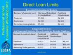 direct loan limits