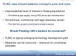 flng view should balance concept s pros and cons