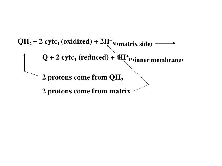 2 protons come from QH