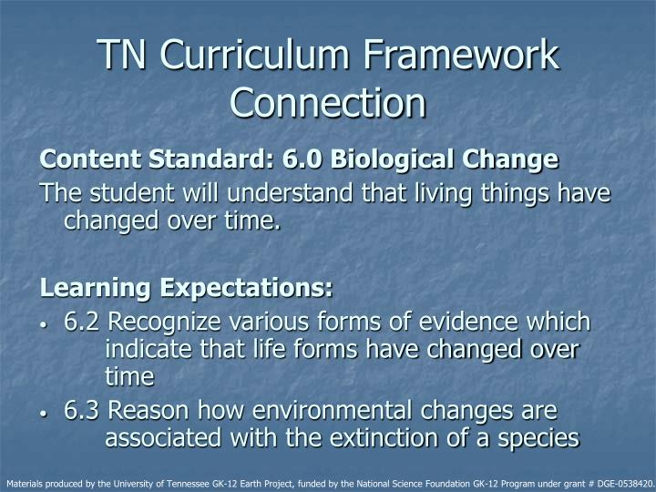 TN Curriculum Framework Connection