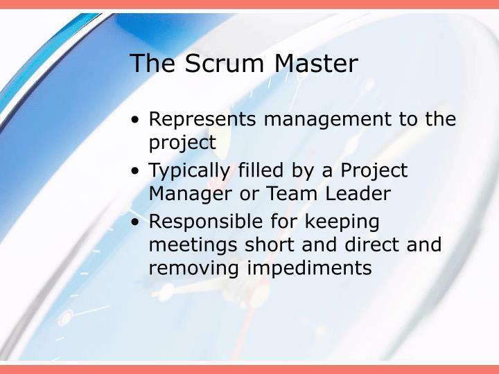 The Scrum Master