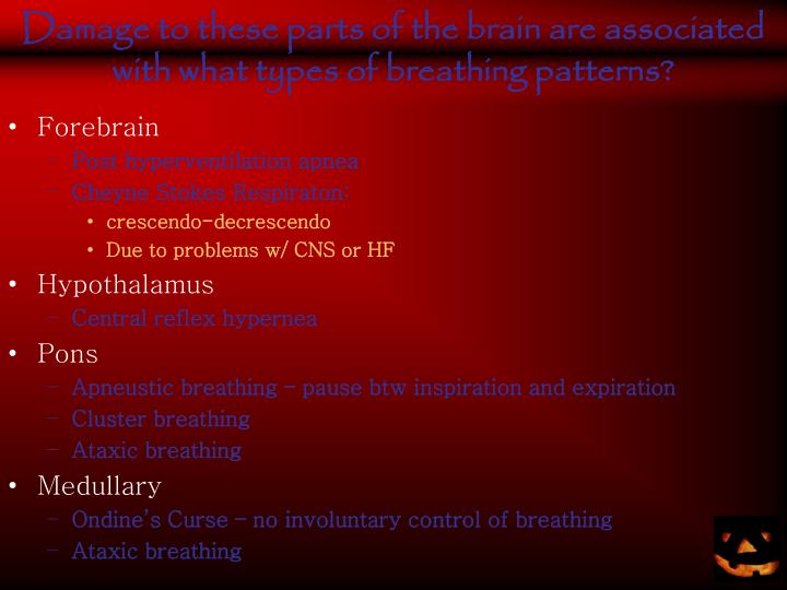 Damage to these parts of the brain are associated with what types of breathing patterns?