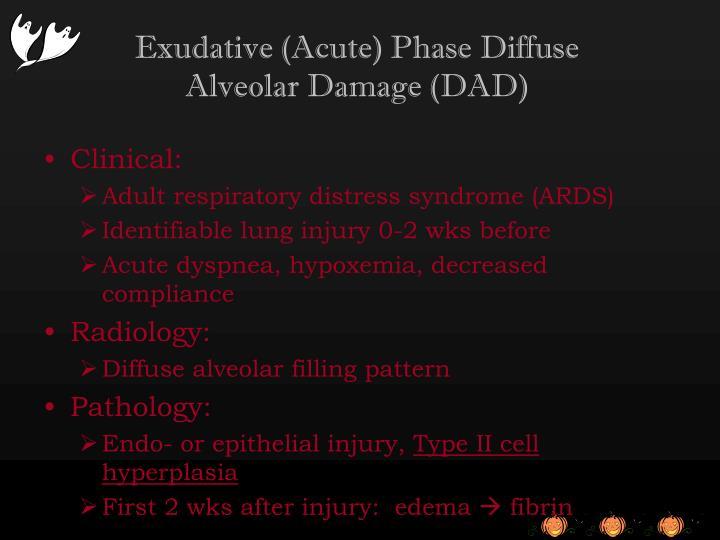 Exudative (Acute) Phase Diffuse Alveolar Damage (DAD)